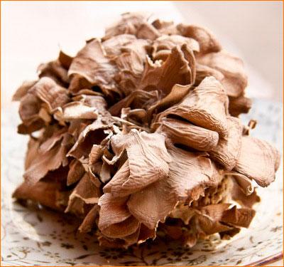 Грифола курчавая - гриб баран
