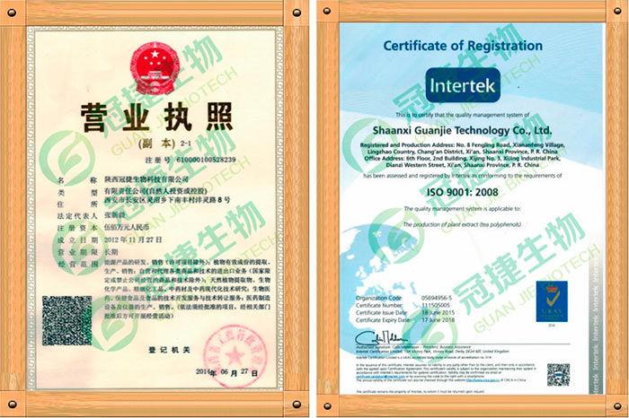 antrodia-sertifikat