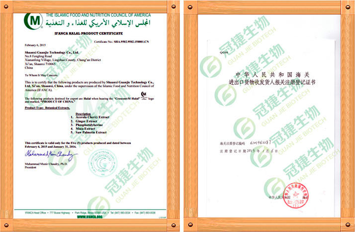 antrodia-sertifikat2